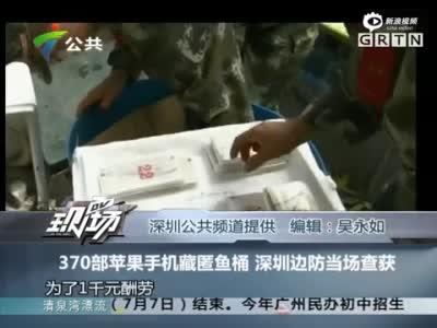 370部苹果手机藏鱼桶被查获 渔民称为千元报酬