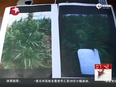 温州警方破获特大贩毒案 涉数十所高校大学生