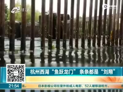 """杭州西湖现""""鱼跃龙门""""奇景 场面壮观"""