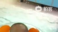和小朋友一起去游泳[兔子],263天[亲亲](来自拍客手机客户端 下载地址:http://video.sina.com.cn/app/sinapaike.html)