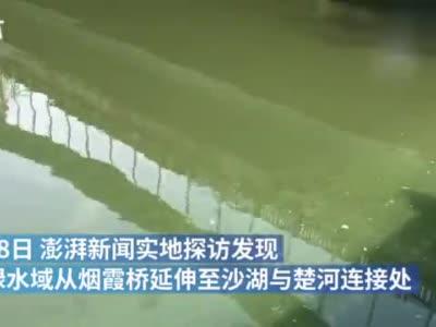 武汉楚河近200米水域发绿,相关部门:无异味则为普通藻类