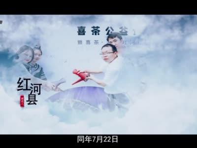 红河县新农人马梅芬 专访