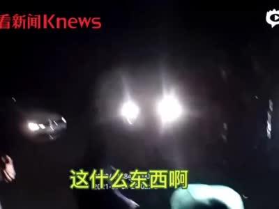 视频|禁捕期顶风作案 浦东警方摧毁一非法捕捞团伙_上海图文_看看新闻