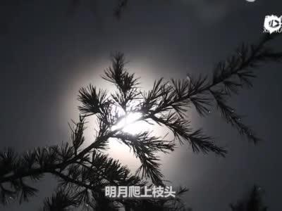 云南澄江:明月松间照 苍茫云海间3
